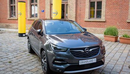 Opel-Grandland-X-307612