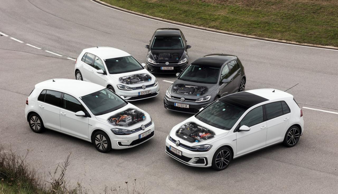 Fünf Gölfe unter sich: Ist der Diesel tatsächlich das schwarze Schaf? Der Benziner die graue Eminenz? Und haben die Erdgas-, Elektro- und Hybrid-Varianten eine weiße Weste? Gilt das Klischee noch, wenn wir nachprüfen?